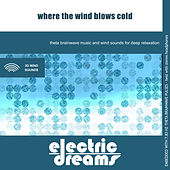 Where the Wind Blows Cold by Electric Dreams