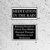Meditation in the Rain - Relaxing Nature Sounds to Unlock Your Hidden Potential Through Mindfulness and Meditation, and to Improve Your Sleep, Promote Good Mental Health, and Encourage Success with Work and Study by Spa Relaxation