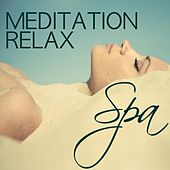 Meditation Relax Spa - Water Sounds and Ocean Waves Soothing Healing Music for Massage, Hot Stone, Thai, Yoga, Meditation & Sauna, Spa Music Relaxation Collection by Soothing Music Ensamble