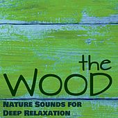 The Wood - Soothing Music Into the Nature Sounds for Deep Relaxation & Healing Meditation to Live Better and Happy by Soothing Music Ensamble