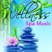 Wellness Spa Music - Jazz Chill Out Sounds to Relaxation, Massage & Yoga Meditation, Soothing Smooth Music for Chillax by Spa Music Collective