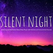 Silent Night – Relaxing and Meditative Deep Sleep Music with Natural and Instrumental Sounds to Improve Your Sleep Cycle by Sleep Music Lullabies for Deep Sleep