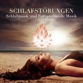 Schlafstörungen - Schlafmusik und Entspannende Musik zu Schlafen Besser by Various Artists