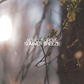 Summer Breeze - Single by Ace Cosgrove