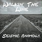 Walkin' the Line by Seismic Anamoly