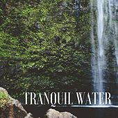 Tranquil Water by Massage Therapy Music