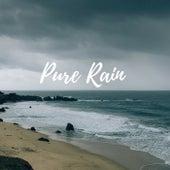 Pure Rain by Zen Music Garden