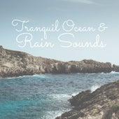 Tranquil Ocean & Rain Sounds by Zen Music Garden