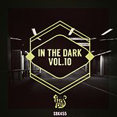 In the Dark Vol. 10 by Various Artists