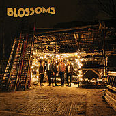 My Favourite Room by Blossoms