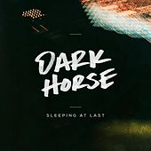 Dark Horse by Sleeping At Last