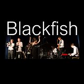 Blackfish by Blackfish