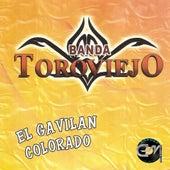El Gavilan Colorado by Banda Toro Viejo