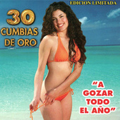 30 Cumbias De Oro by Various Artists
