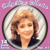 14 Super Exitos, Vol. 1 by Angelica Maria