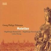 Telemann: Motetten by Various Artists