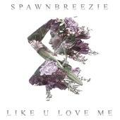 Like U Love Me by Spawnbreezie