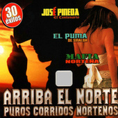 Arriba El Norte, Puros Corridos Nortenos by Various Artists