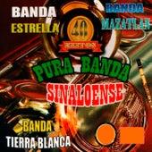 Pura Banda Sinaloense by Various Artists