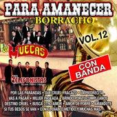 Para Amanecer Borracho, Vol. 12 by Various Artists