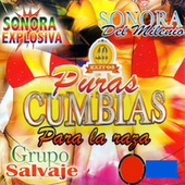 Pura Cumbias Para La Raza by Various Artists