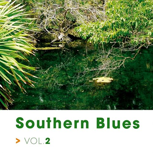 Southern Blues Vol.2 von Various Artists