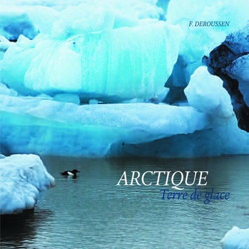 Arctique Terre de glace by Deroussen Fernand