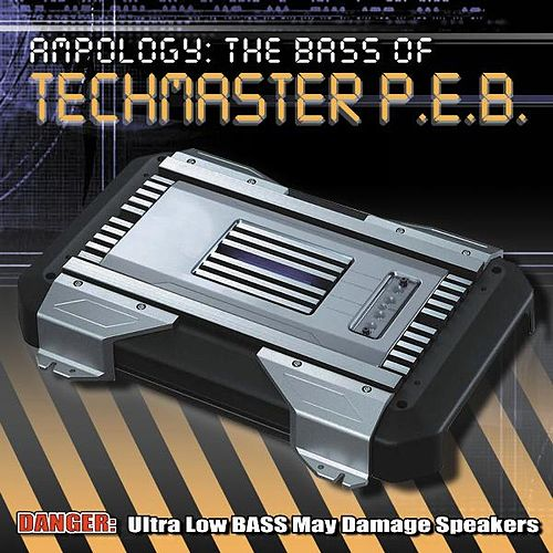 Ampology: The Best of Techmaster P.E.B. by Techmaster P.E.B.