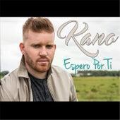 Espero Por Ti by Kano