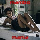 Mambo Mania by Extra Latino