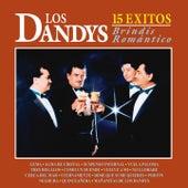 Brindis Romántico by Los Dandys