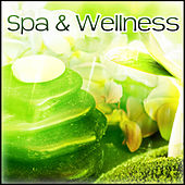 Spa & Wellness – Most Calmness Nature Sounds for Deep Relax while Spa & Beauty,  Calm Down Emotions and Enjoy Your Life, New Age Music by New Age