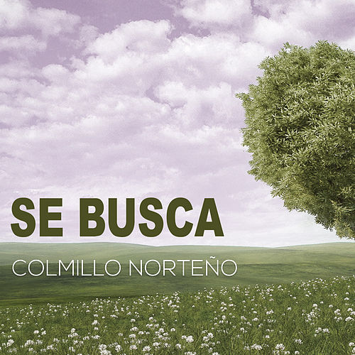 Se Busca (Version Pop) by Colmillo Norteno