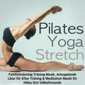 Pilates, Yoga & Stretch - Fettförbränning Träning Musik, Avkopplande Låtar för Efter Träning & Meditation Musik för Hälsa Och Välbefinnande by Ibiza Fitness Music Workout