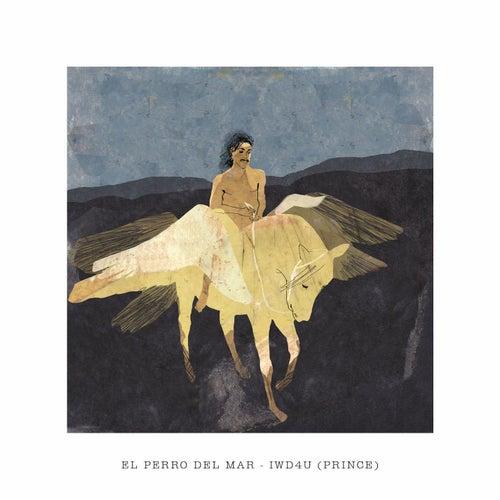 Iwd4u by El Perro Del Mar