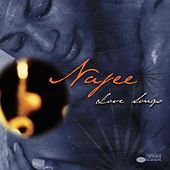 Love Songs by Najee