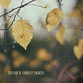 Tranquil Forest Nights by Deep Sleep Relaxation