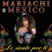 Lo Siento Por Ti by Mariachi Mexico