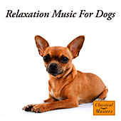 Relaxation Music For Dogs by The Dog Whisperer Band