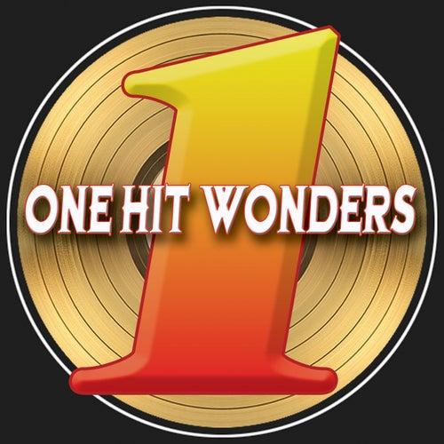 One Hit Wonders by Various Artists