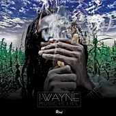 Music Is Life by I Wayne