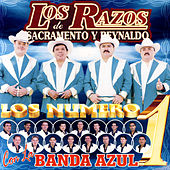 Los Numeros 1 by Los Razos