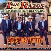 Sangre Caliente by Los Razos