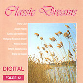 Classic Dreams 12 by Various Artists