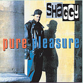Pure Pleasure by Shaggy