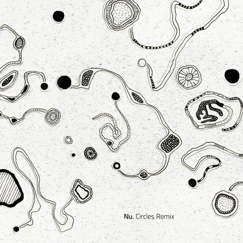 Circles Remix by NU