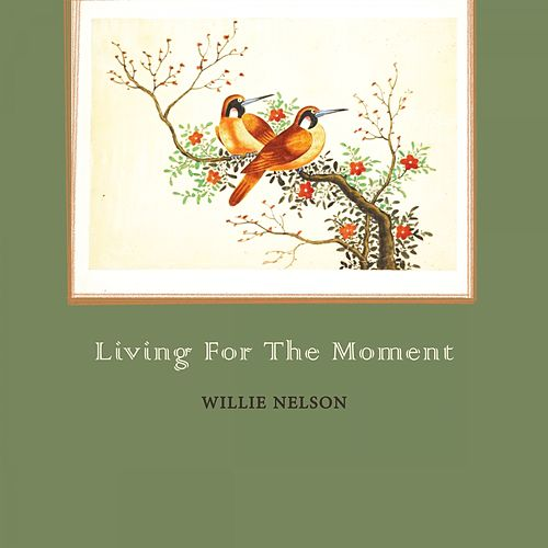 Living For The Moment von Willie Nelson