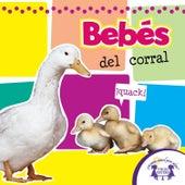 Bebés del Corral by Kim Mitzo Thompson