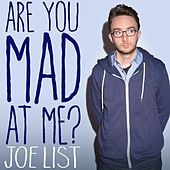 Are You Mad At Me? by Joe List