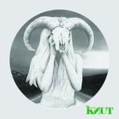 Soulshaker by Knut
